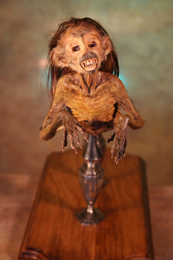The Feejee Mermaid And Other Essays